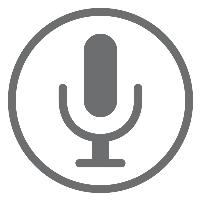icon Voice Services Web